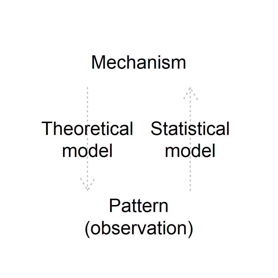 Conceptual diagram for the roles of theoretical and statistical models. Theoretical models (generally) predict patterns under certain mechanisms (and assumptions) while statistical models infer mechanisms behind observed patterns